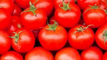 Nogales No Longer Top Spot For Mexican Tomato Imports