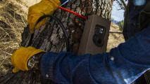 Arizona Game And Fish Bans Trail Cameras For Hunting