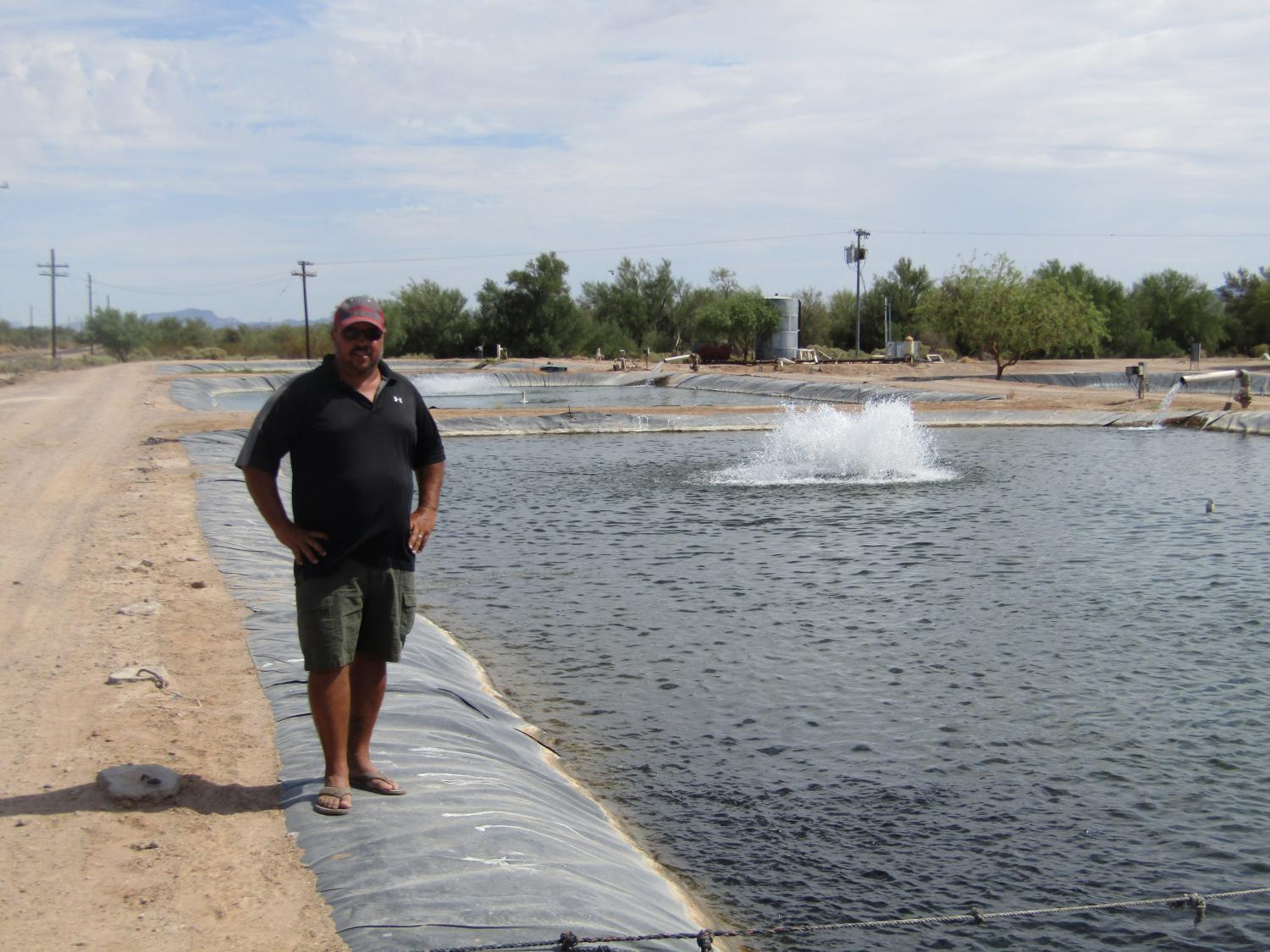 fish in the desert arizona farmer nets sustainable commercial