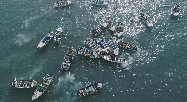 Tim Grenard/Sea Shepherd