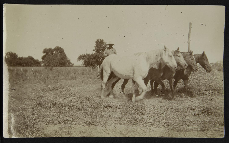 Daniel Boone Linderman/Arizona State Museum