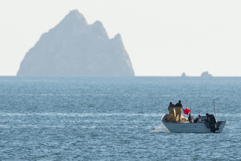 CONANP/Museo de la Ballena/Sea Shepherd