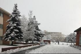 Snow at NAU
