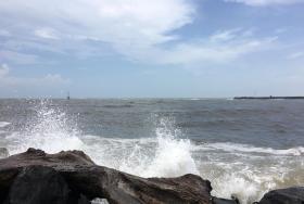 Veracruz Gulf