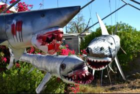 three metal sharks
