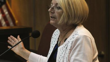Arizona Senate, Private Companies Taking Donations For Election Audit