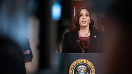 VP Harris Has Stern Words For Guatemala Ahead Of Mexico Visit