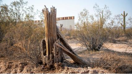Its Like A Scorched Earth: Photographer Documents Border Wall Construction, Impact