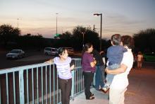 TucsonGreyhound.JPG