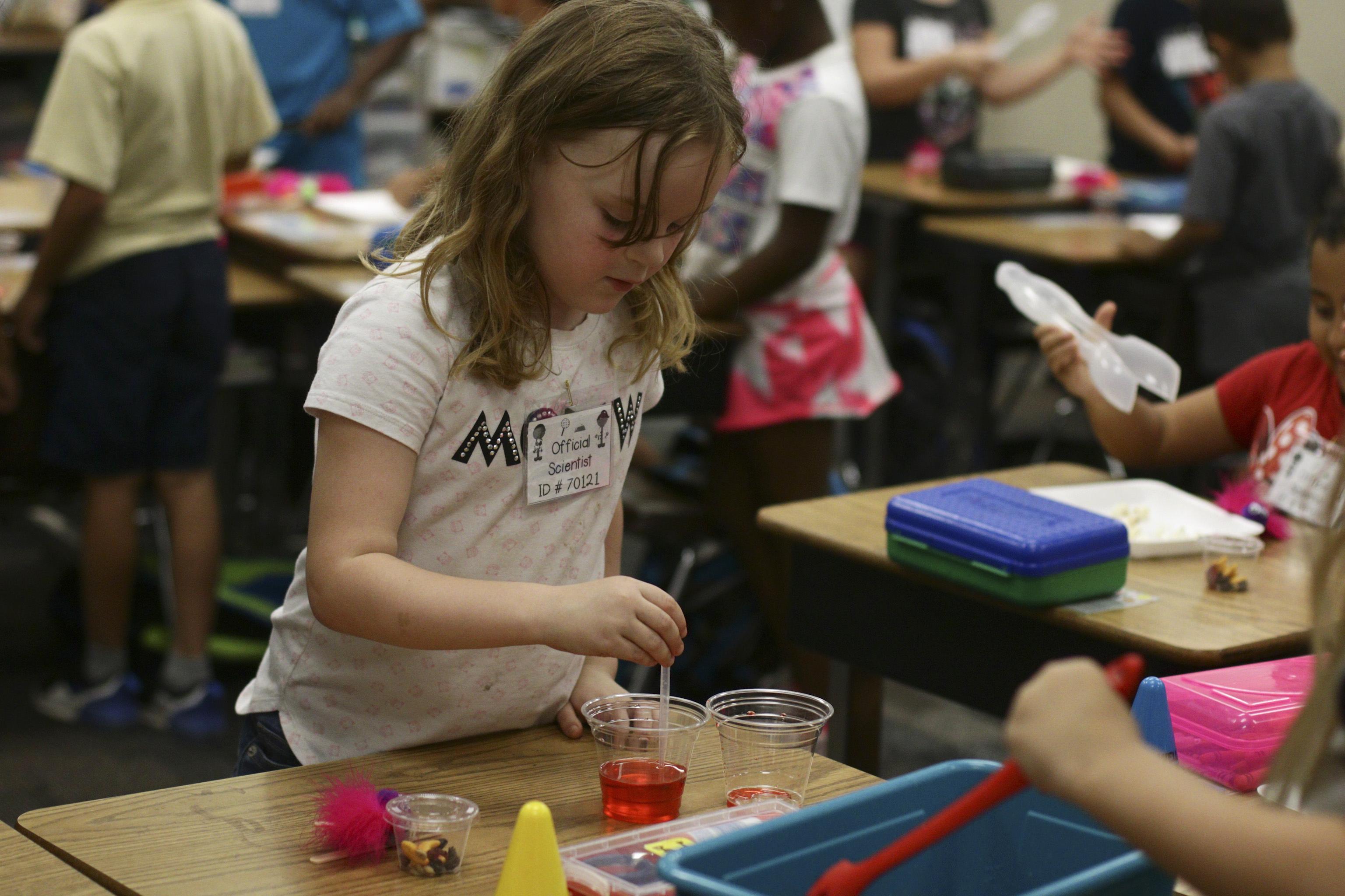 Hummingbird elementary school activity
