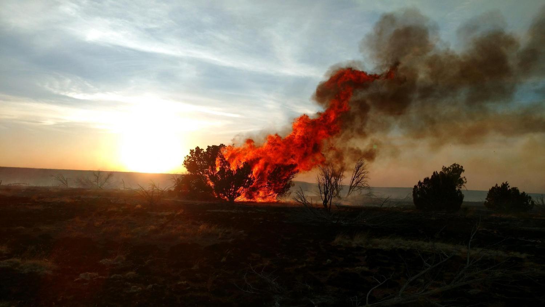377 Fire flames