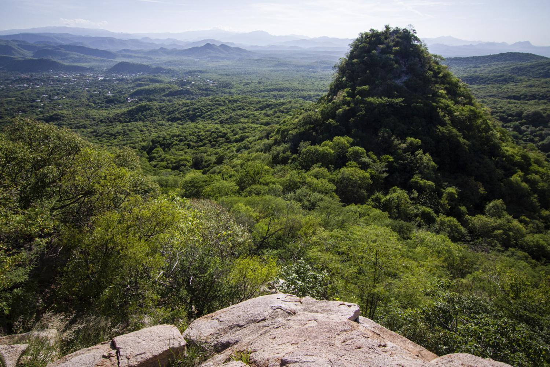 Alamos Conservation