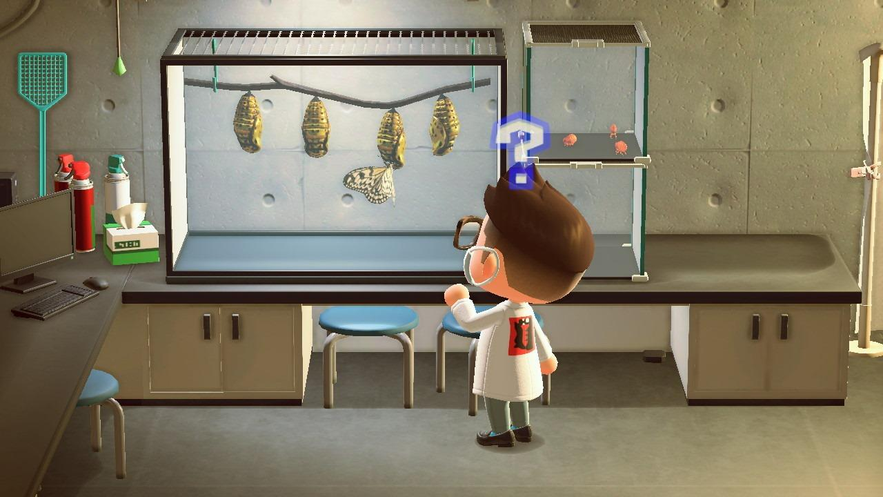 Animal Crossing New Horizons KJZZ items