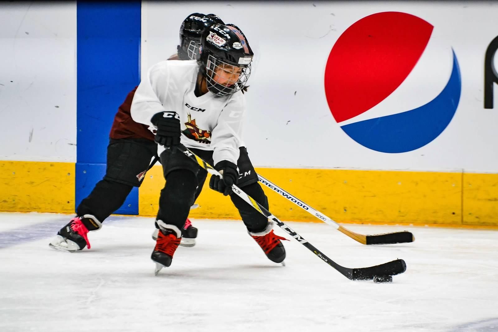 Arizona Kachinas Hockey