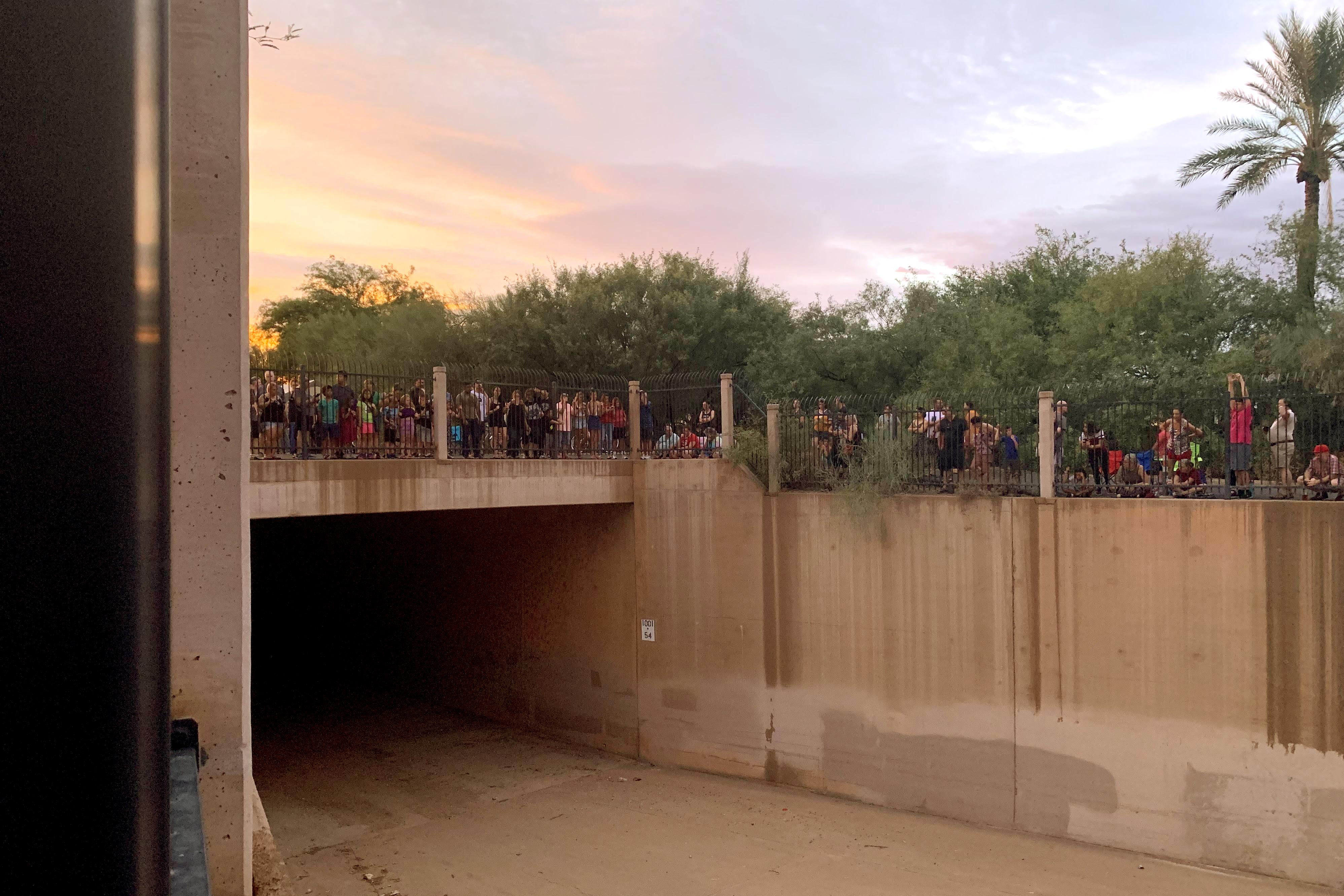 crowd waiting for bats to appear