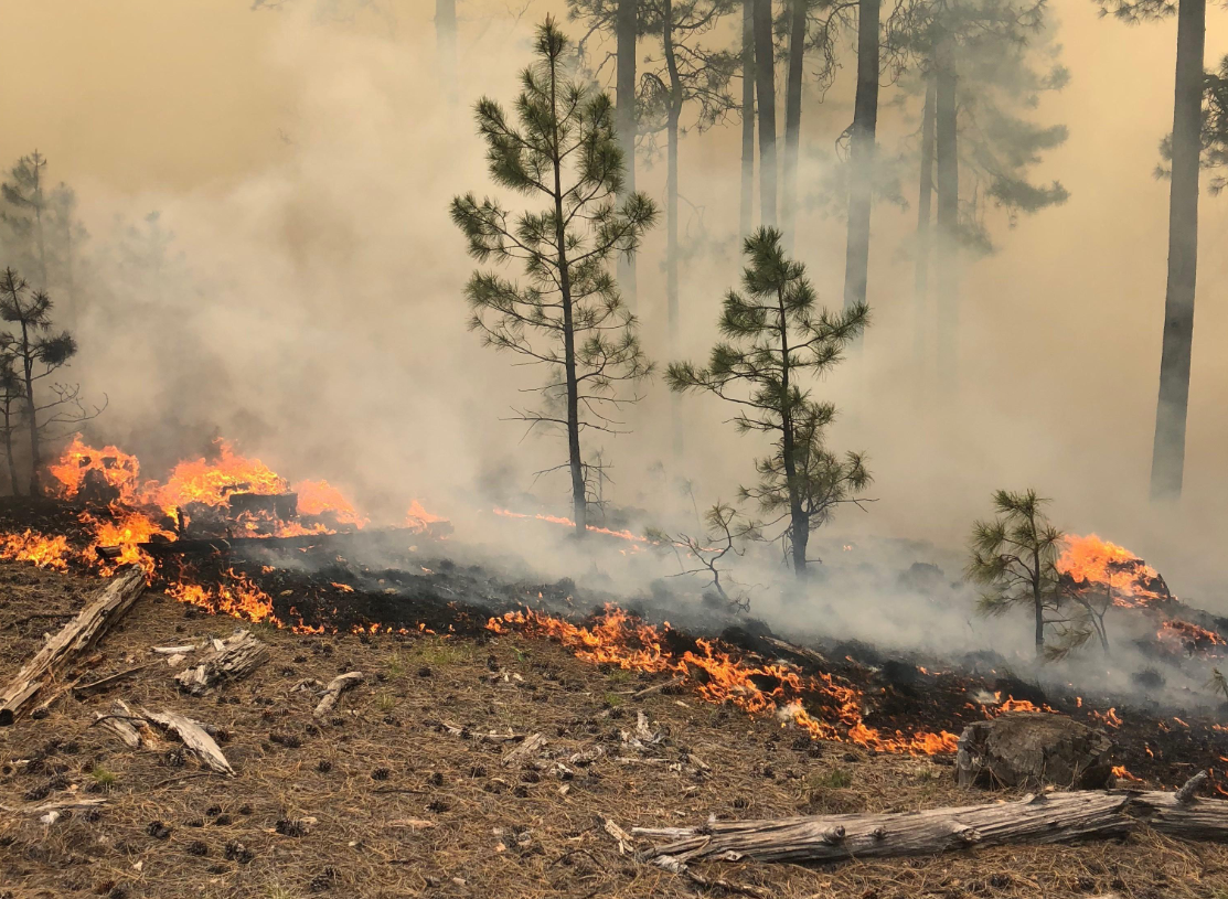 Coldwater Fire burning near Payson