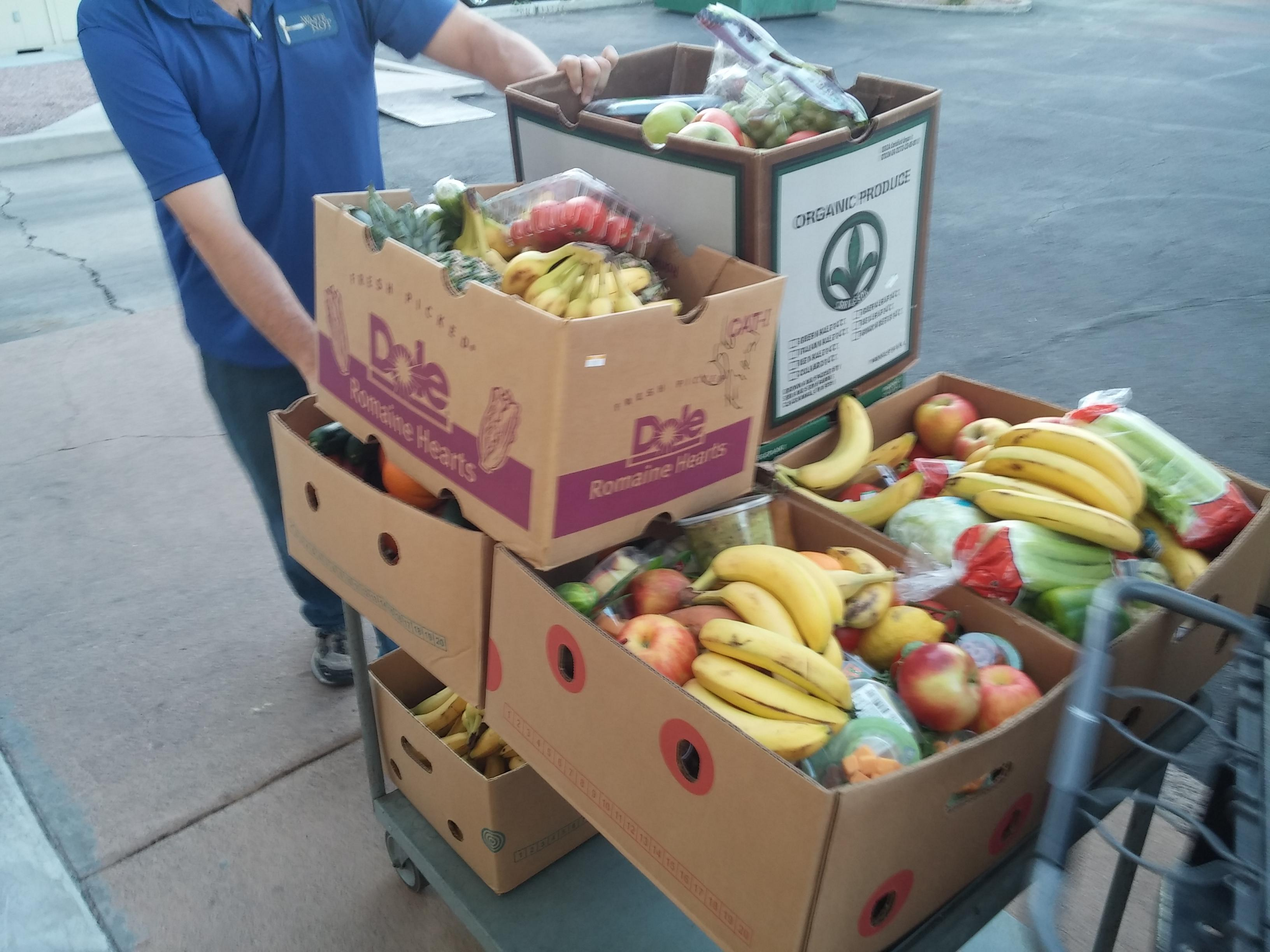 Food, waste, recovery