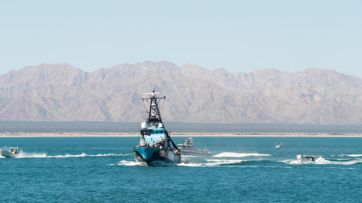 fishing boats surround Sea Shepherd ship