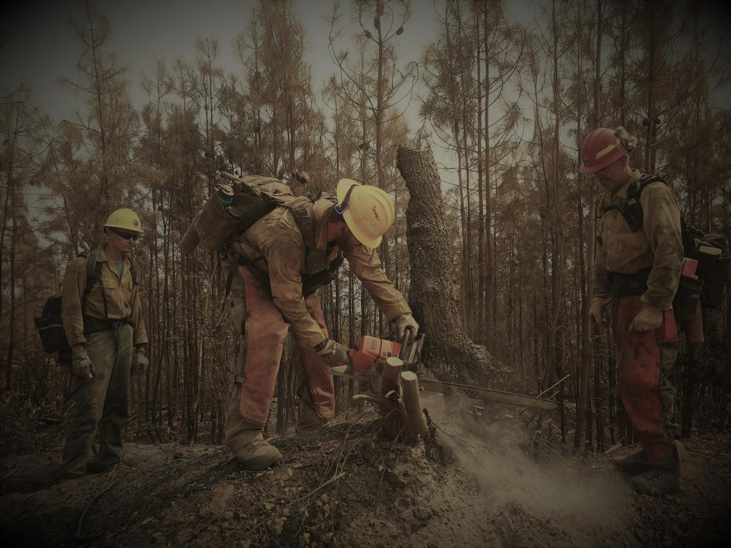 Firefighters battling Carr Fire last year in California