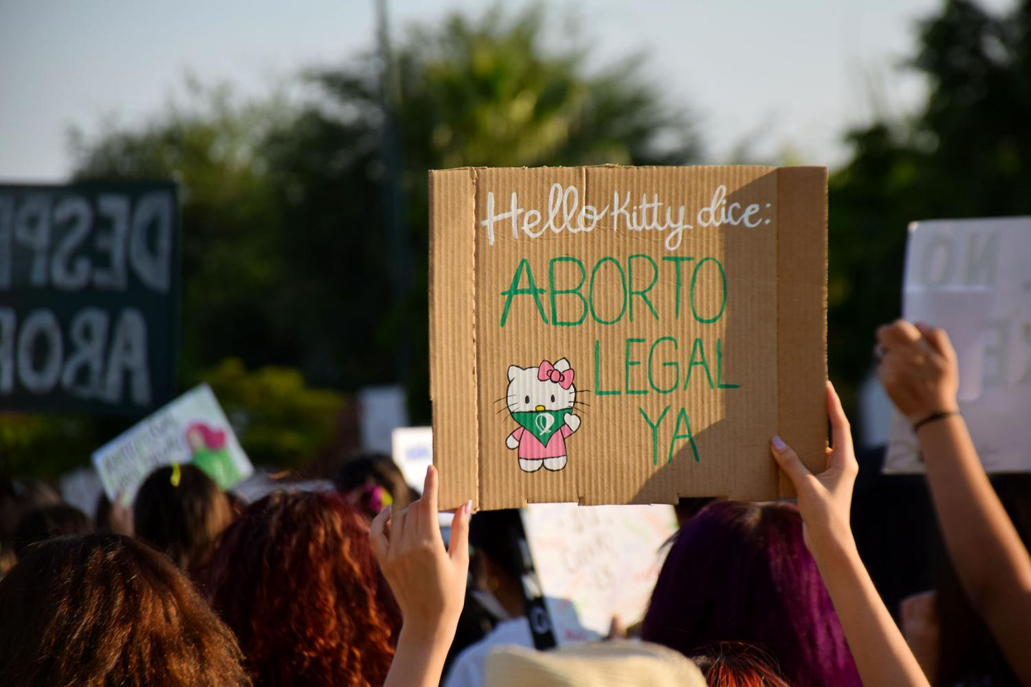 Legal abortion now sign