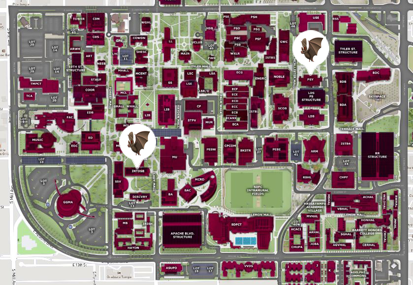 asu map tempe campus Q Az Is There Still An Active Bat Colony On Asu S Campus Kjzz asu map tempe campus