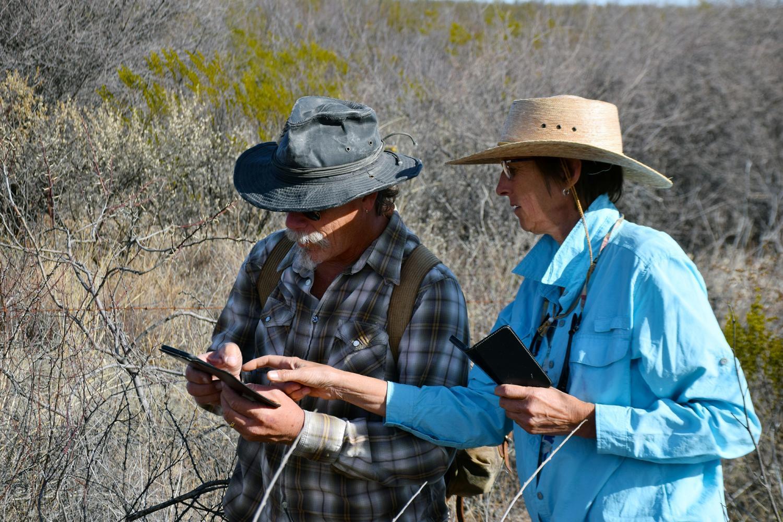 Logging data during the Border BioBlitz