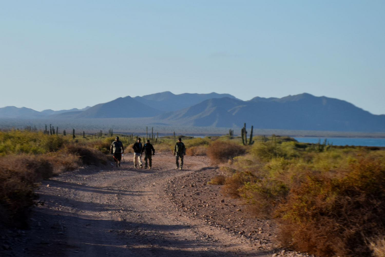 men walk in desert