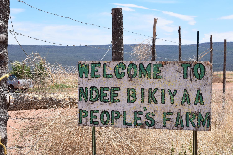 Ndee Bikiyaa