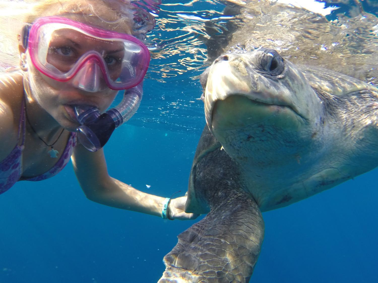 woman and turtle underwater