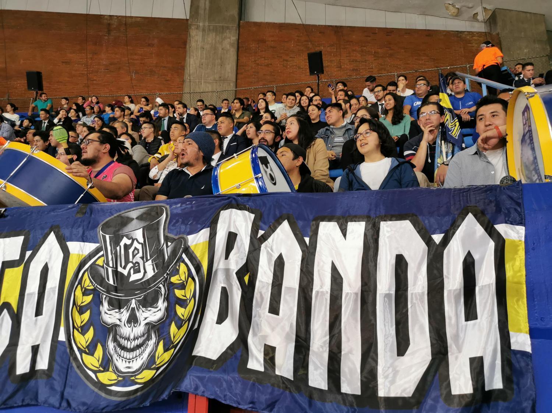 Mexico City Capitanes fans
