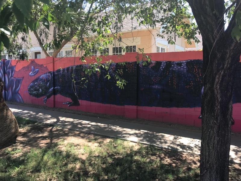 Gila Monster with Sombrero Mural