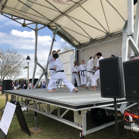 A Japanese martial arts demonstration at the Phoenix Matsuri Festival.