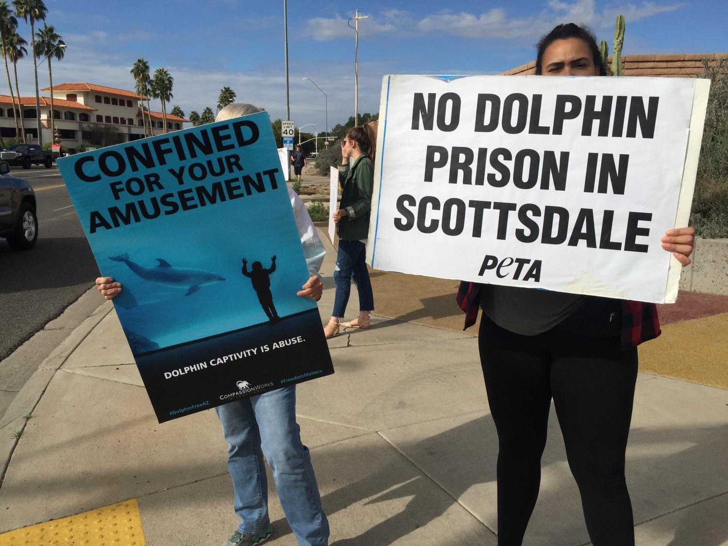Dolphinaris protest