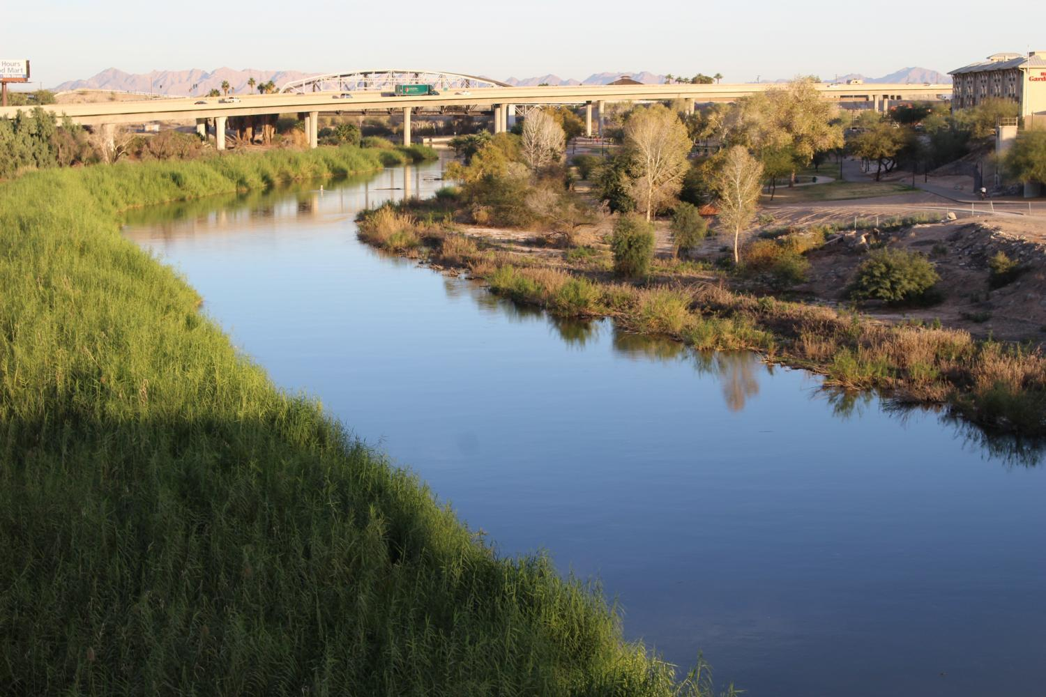 Colorado River in Yuma
