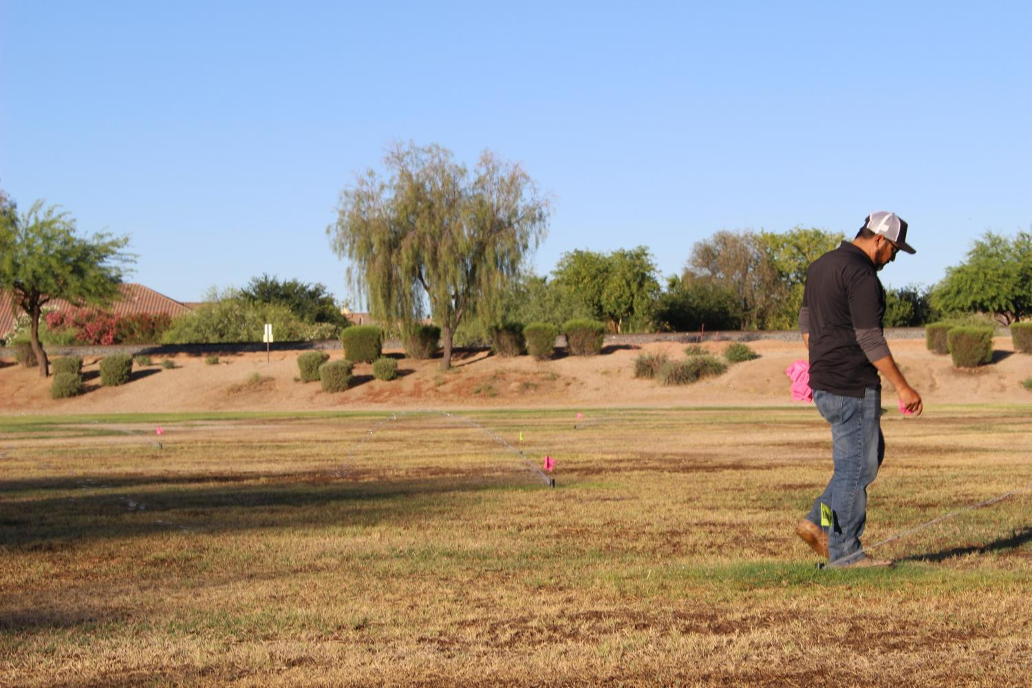 Jose Alvarez marks the sprinkler heads he has to change in order to test a new irrigation regime.