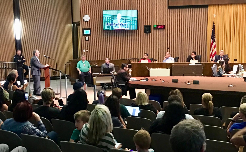 man at podium speaking to council