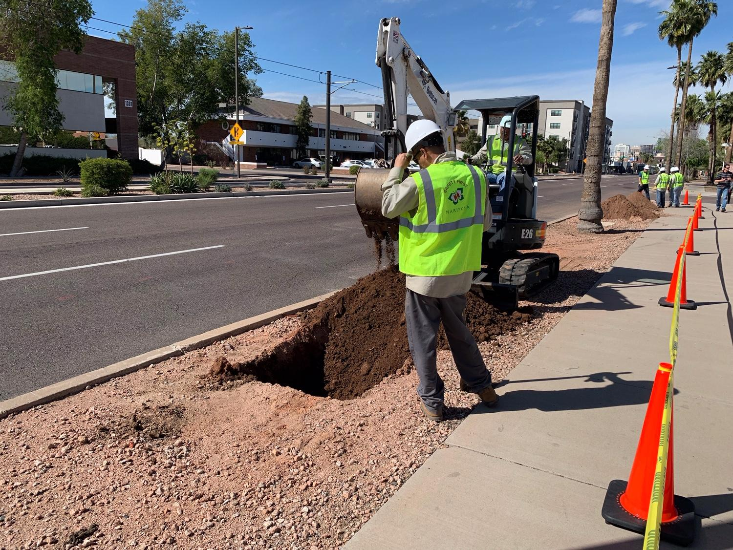 Phoenix Public Transit Department crews work on replacing missing trees with new saplings.