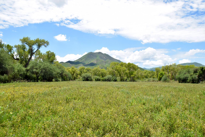 Fields near the Rio Sonora