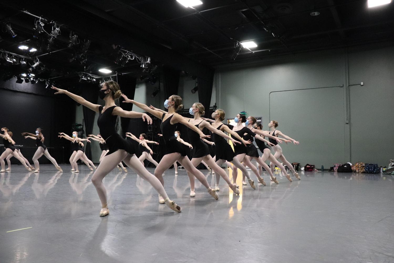Swan Lake Rehearsals