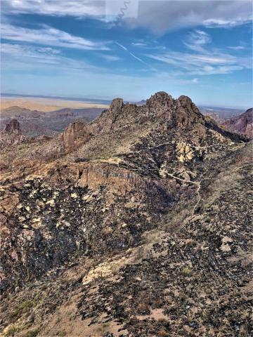Arizona Trail within the Telegraph Fire