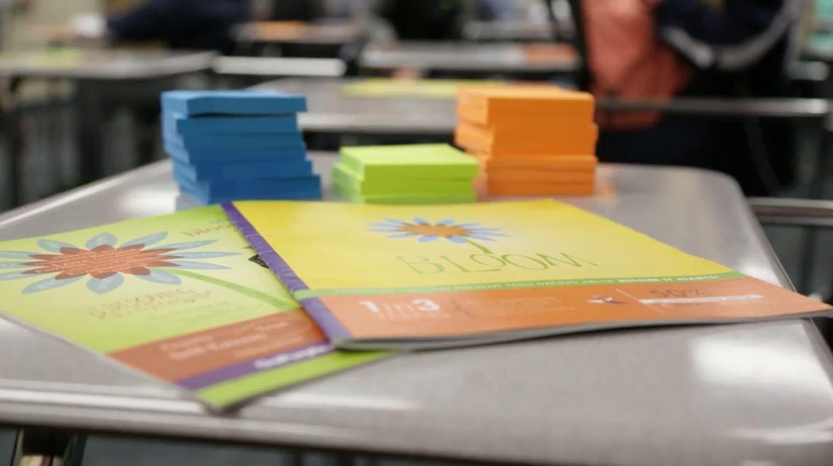 Bloom365 classroom materials