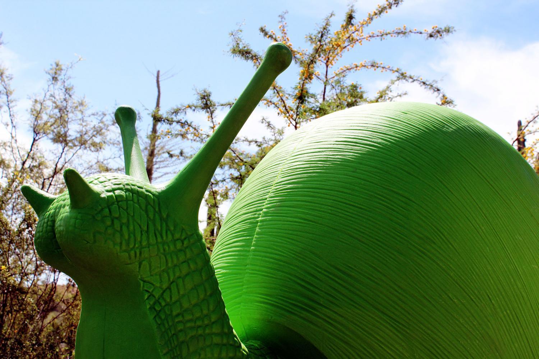 Wild Rising snail by Cracking Art