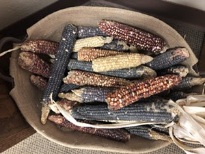 Heritage corn from Ramona Farms