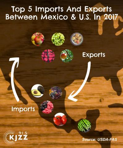 import export chart