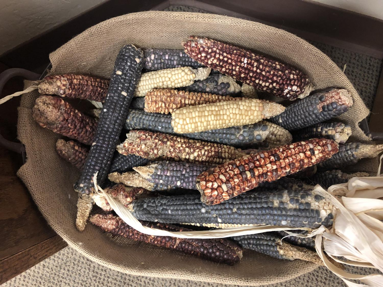 Ramona farms heirloom corn