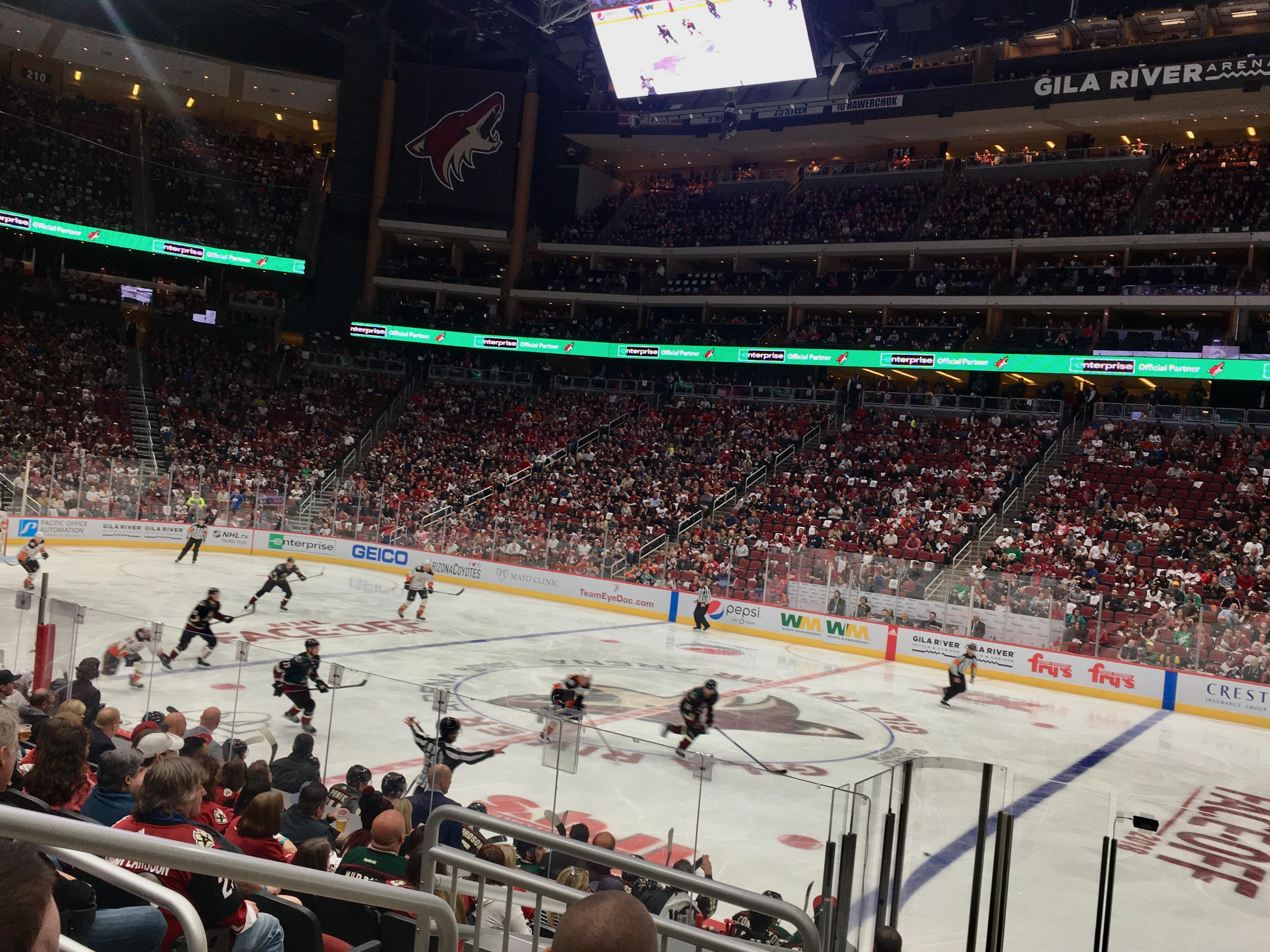 Arizona Coyotes on the ice