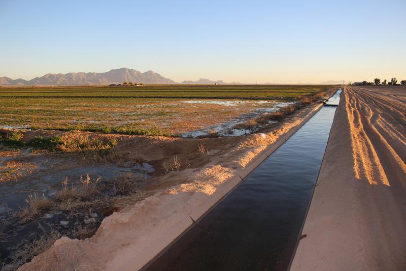 An irrigation canal carries Colorado River