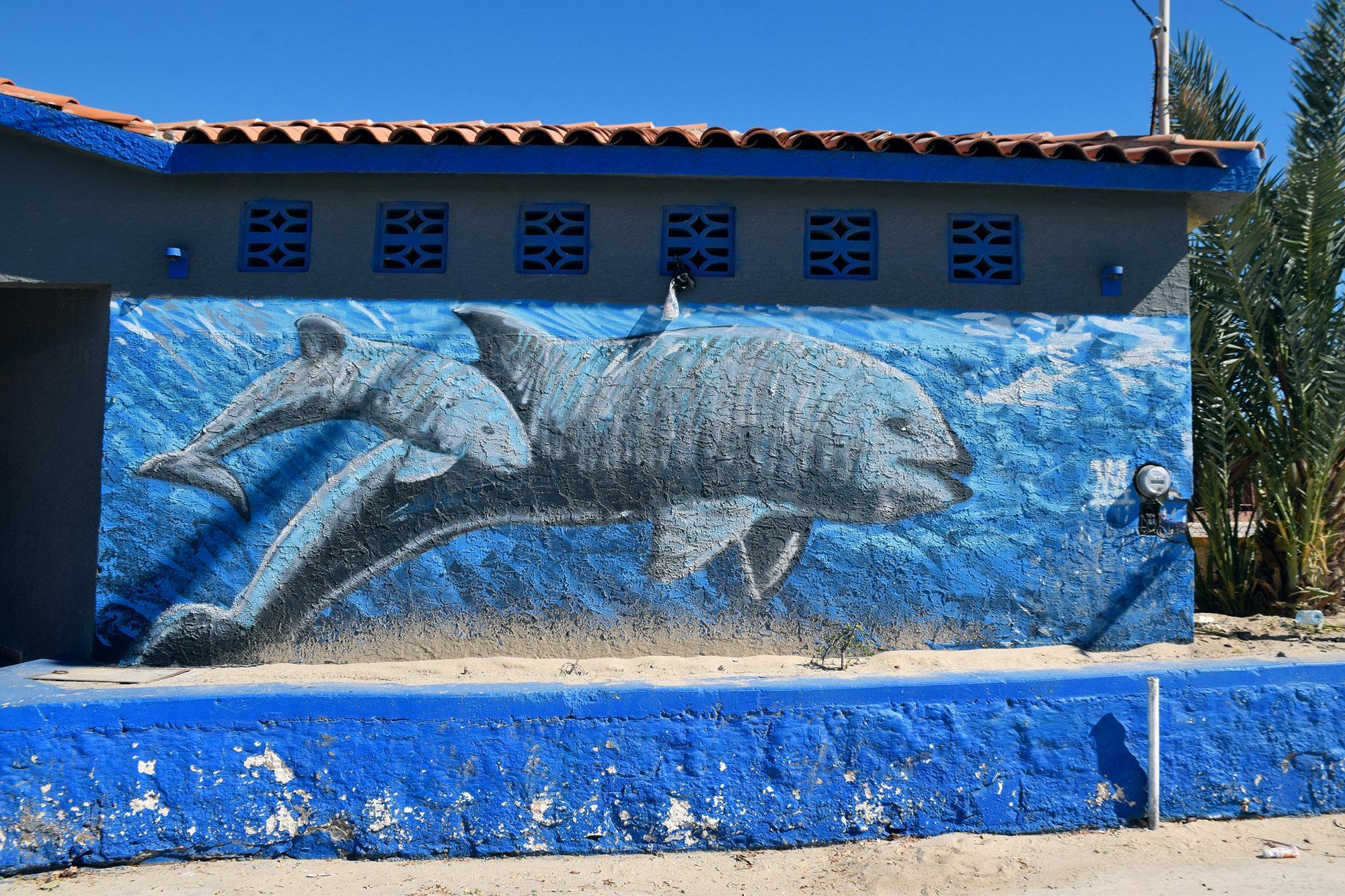 vaquita mural