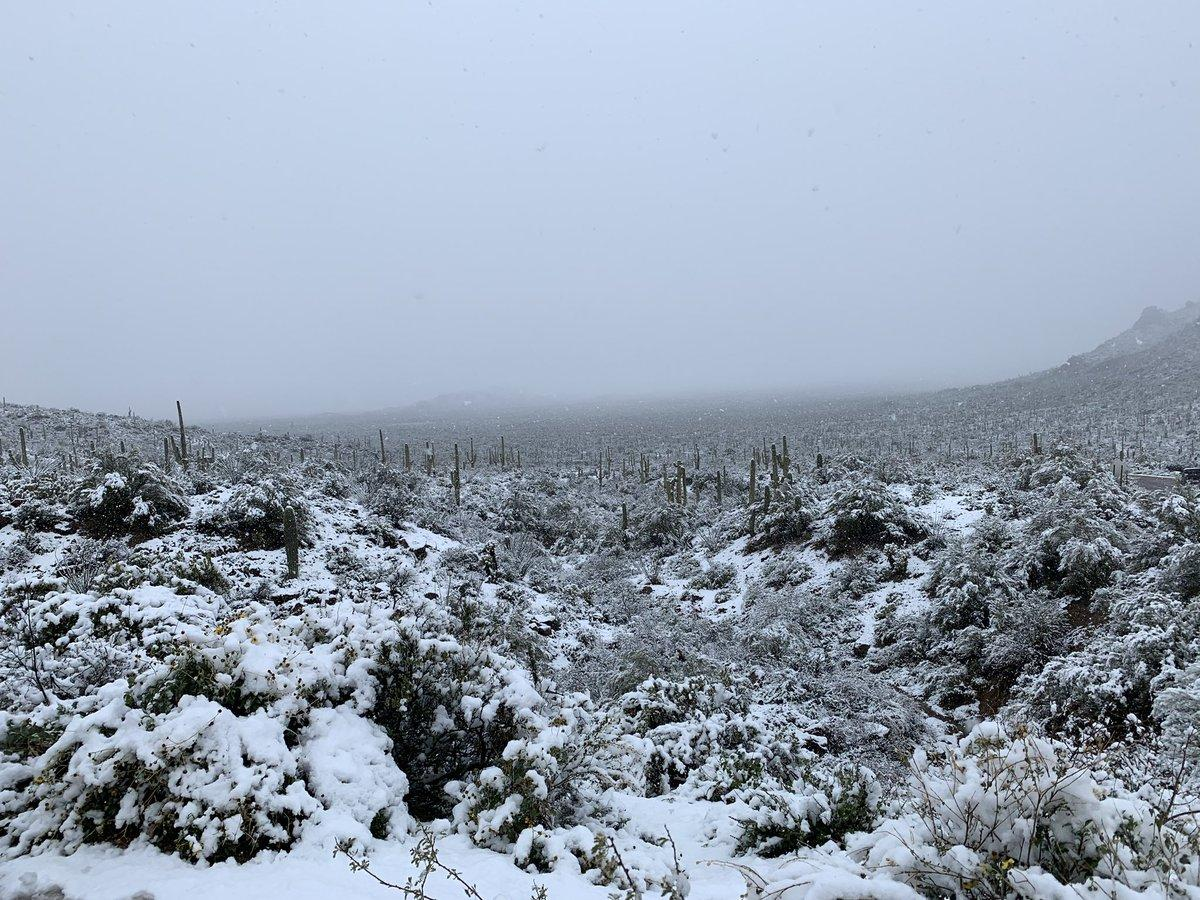Snow at Gates Pass, Tucson.