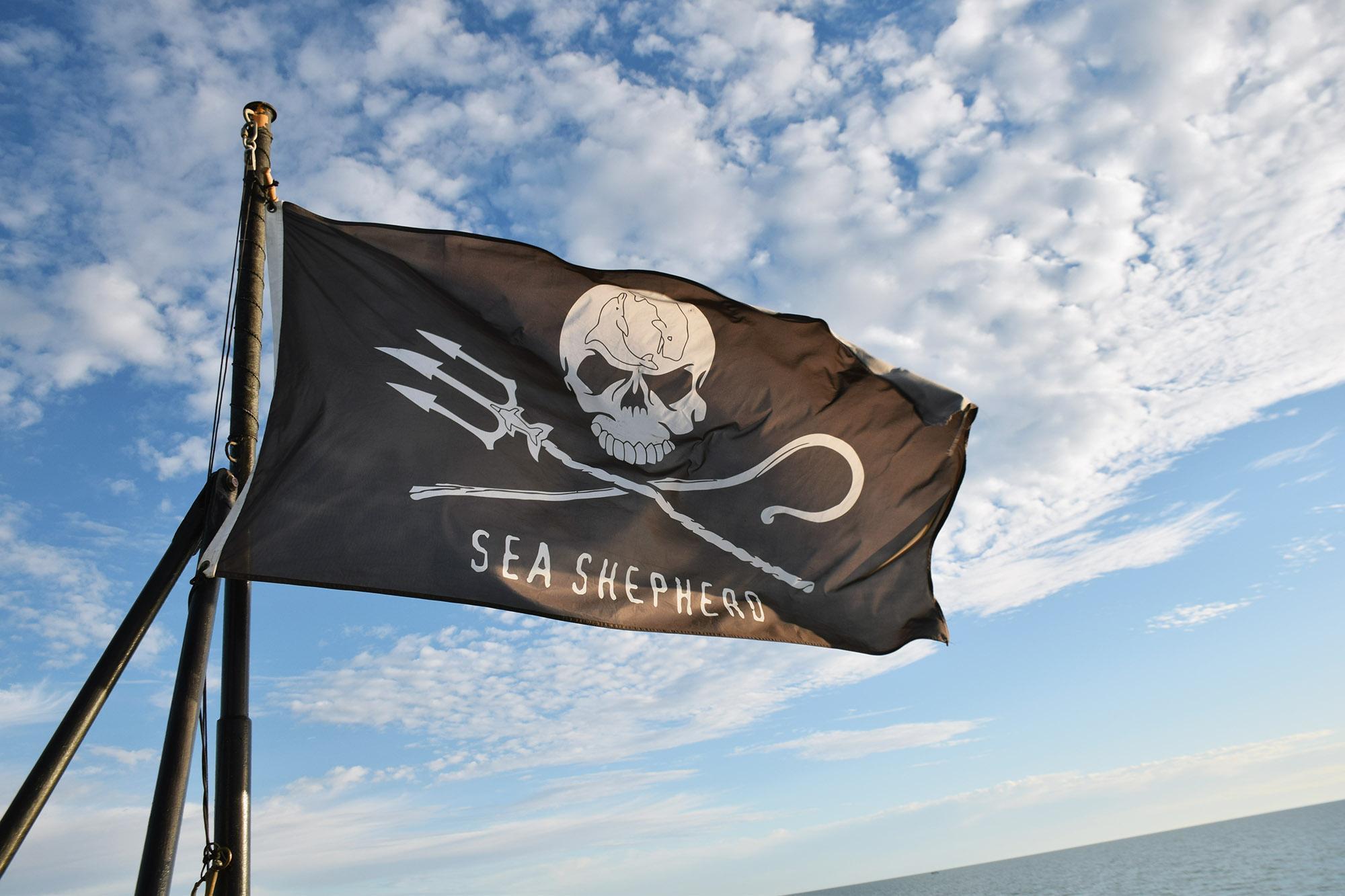 Sea Shepherd flag